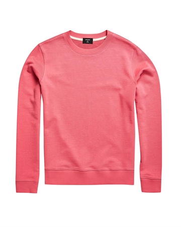 Superdry Label Sweat Pink